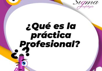 ¿Qué es la Práctica Profesional?